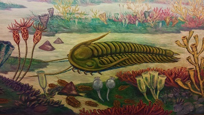 trilobite-painting-resized