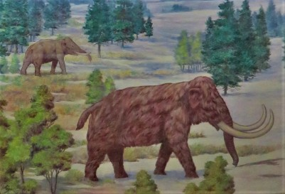 Mastodon & Mammoth, Painting by John W. Hope, Michigan State University Museum, Photo by cjverb (2017)