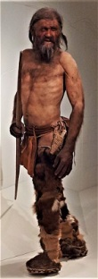 Model of Otzi the Iceman, Photo by Andre Schade, WikiMedia Commons