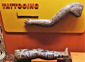 Samoan Tattooing Exhibit, Milwaukee Public Museum, Photo by cjverb (2017)