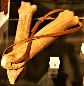 Medieval Skates made of bone, London Museum, Photo by Steven G. Johnson, Wikimedia Commons