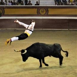 Bull Leaping at Huamantla, Tlaxcala, Mexico, Photo by Alejandro Linares Garcia, Wikimedia Commons