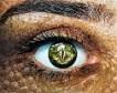 Crocidile Eye by Sarah Richter, Pixabay-100px