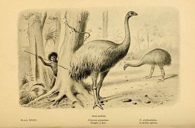 Hunting Moa (1896) by Joseph Smit, Wikimedia Commons