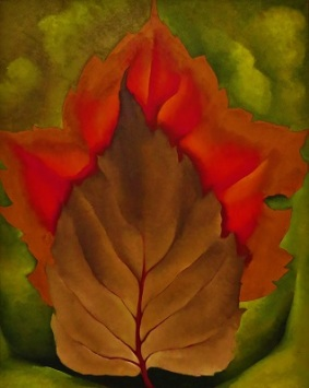 Red & Brown Leaves (1925) by Georgia O'Keeffe, Milwaukee Art Museum, Photo by cjverb (2017)
