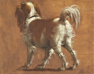 A Spaniel (after Paolo Veronese; c1580s) by Bartolomeo Passarotti, National Galleries of Scotland
